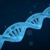 gene sintetico per glicogenosi
